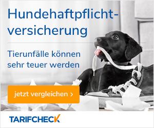 Sie benötigen eine Tierhalterhaftpflicht-Versicherung?